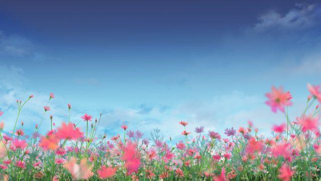 flower_garden1